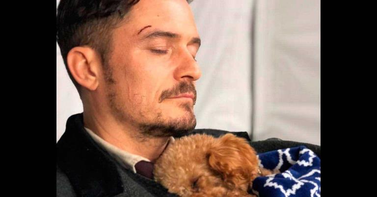 Orlando Bloom se despide de su desaparecido perro Mighty tras encontrar su collar